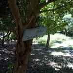 巡礼古道。山道を抜けて右手の公園に入ると道標があります。