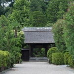 常楽寺の参道と茅葺きの山門。