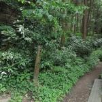 平成巡礼道の入口。