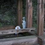 熊野神社(大船)本殿の脇にある祠には小さな御狐様。