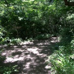 巡礼古道。山道を抜けて右手の公園に入ると道標があります。そのまま公園内を進むと平成巡礼道がみえてきます。右手の道が平成巡礼道です。