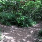 平成巡礼道の山道が終わります。右は名越切通し方面、左は巡礼古道方面。この分岐には道標があります。