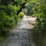 常楽寺境内、山門から本堂へと至る参道を本堂側からみます。