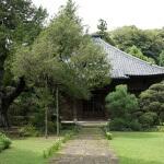 寿福寺、中門からみる本殿。
