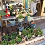 御成通りにあるHMT。店の外には観葉植物が並びます。
