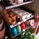 鎌倉ロコマート&ガーデン。花瓶や鉢植えが並んだ棚。価格は390円〜1,000円くらいまでと買いやすいです。