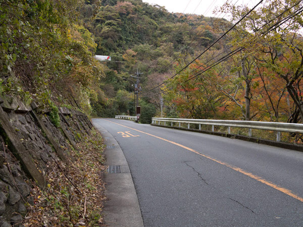 箱根観音の後、県道をしばらく歩きます。