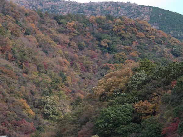 この辺りで視界が開けます。秋色の山々。