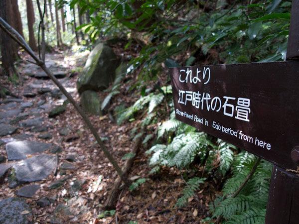 江戸時代の石畳が残る部分はきちんと案内があります。