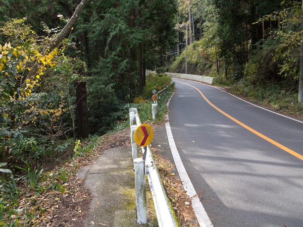 少し県道を歩いたらすぐまた森の中へ。