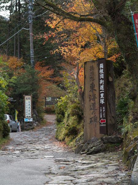 曲がるとすぐ箱根路東海道の碑があります。紅葉がきれい。近くに守源寺があります。
