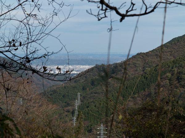 樹々の間から相模湾がみえます。