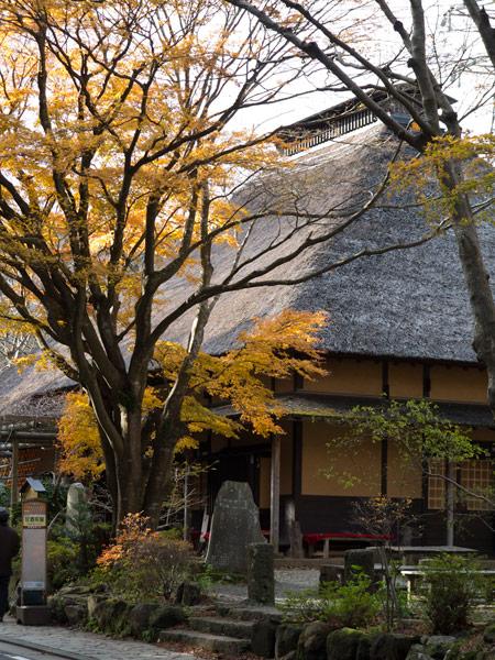 甘酒茶屋の前には見事な紅葉。