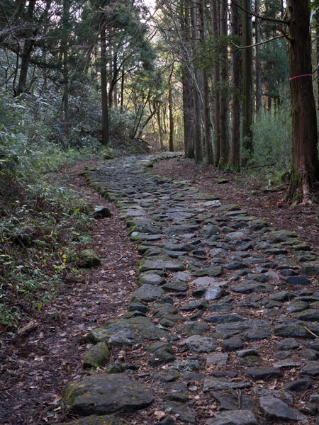 江戸時代の旅人を彷彿とさせる石畳の旧街道。