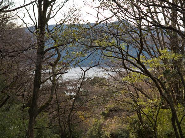 芦ノ湖がみえました。江戸からここまで24里程でしょうか。江戸時代の旅人なら感慨はもっと深かったでしょう。