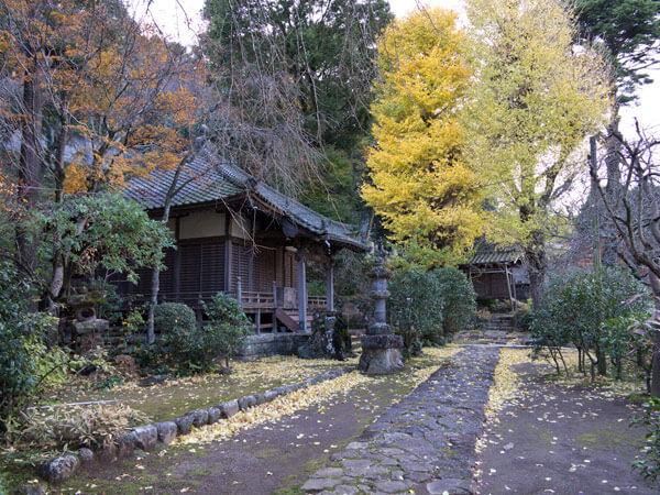 正眼寺の紅葉は曽我堂にあります。