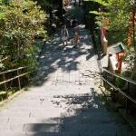 箱根神社の参道。