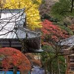 箱根、早雲寺の紅葉。