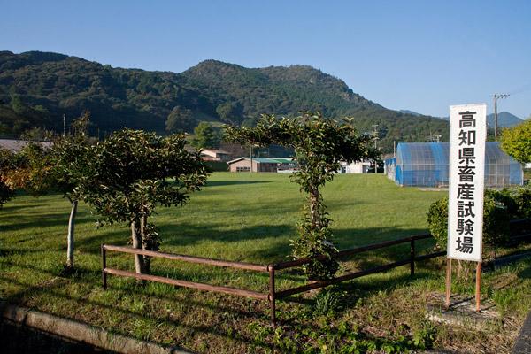 高知県畜産試験場。7時54分。