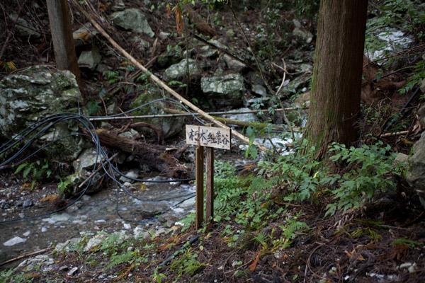 「朽木紅葉谷」と立札があります。