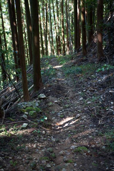 朽木峠を下ります。