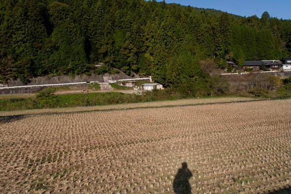 周囲の風景。