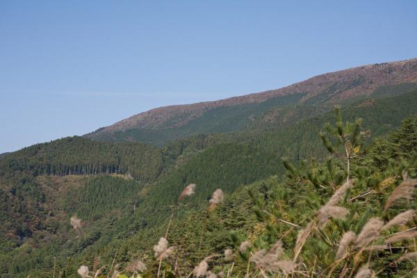 標高1,400mの四国カルストが随分近くなりました。