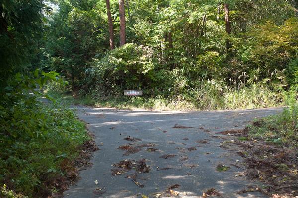 しばし舗装道路。
