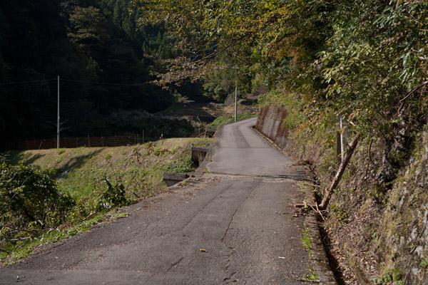 韮ヶ峠に向かいます。