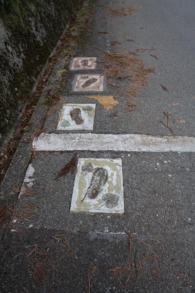 龍馬の足跡だと思います。