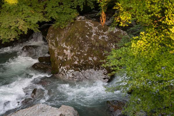 男水自然公園の後ろは綺麗な川。見惚れてしまいました。