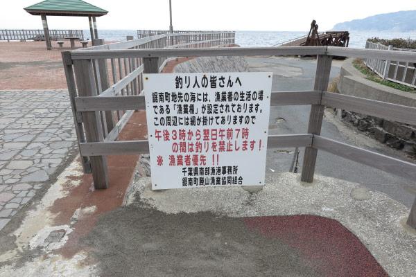 近くには釣り人への警告文が貼ってありました。漁業者優先はわかりますが、強すぎる文面に違和感を覚えました。国民の海をお借りして商売をさせていただいているという弁えを感じません。