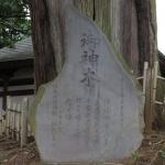 佐奈田霊社、御神木の石碑。「大正七年正月吉祥日、小田原町 佐奈田飴本舗 剱持真作」とあります。