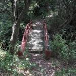 遺跡内の橋。かなり老朽化しており、普通に渡るのは危険です。