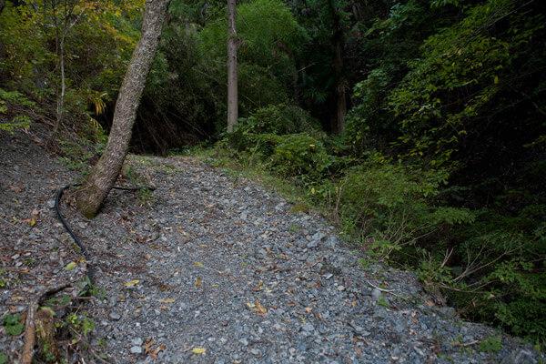 山道に入ります。