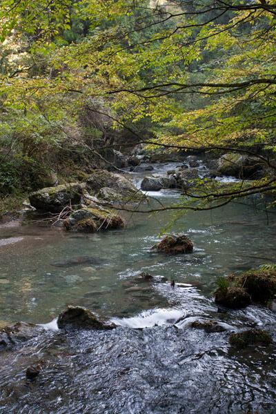 趣ある川沿いを歩きます。10時11分。