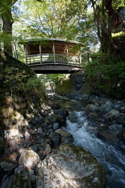 天神社と御幸の橋。10時15分。