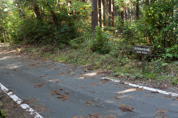 封事ヶ峠を越え、舗装道路と交差しながら進みます。1時37分。
