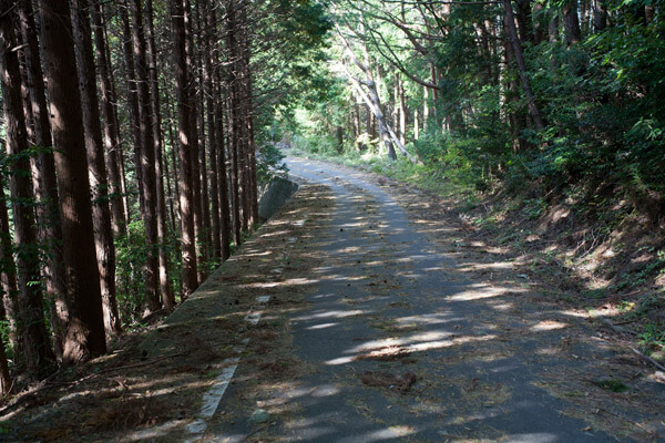 封事ヶ峠を越え、舗装道路と交差しながら進みます。1時13分。