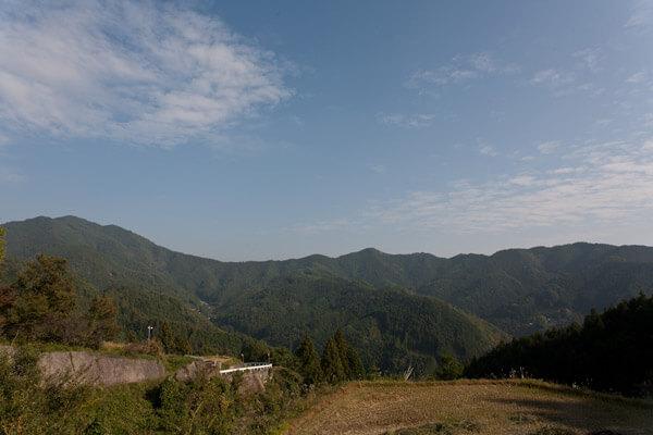 周囲の景色。