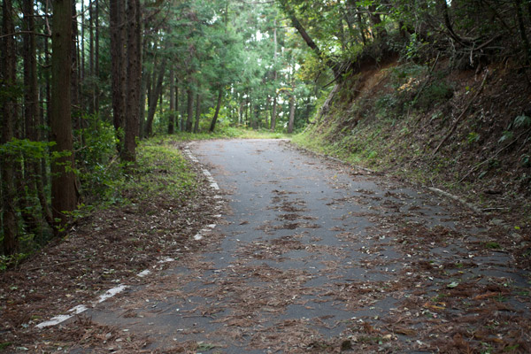 泉ヶ峠に向かいます。