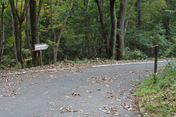 泉ヶ峠に向かいます。3時53分。脚がまずい状態ですが、無視して動かします。後で大変なことになりそう。。