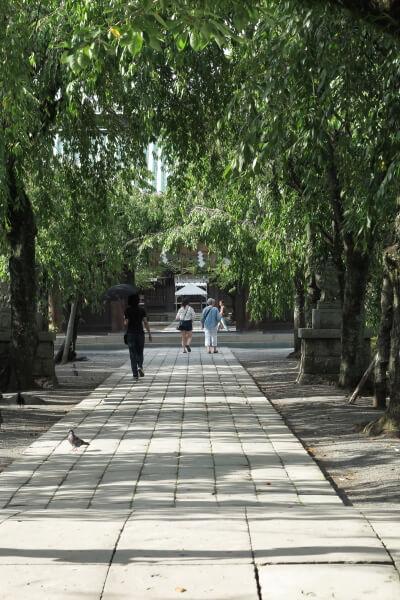 大鳥居から総門への参道。清々しい雰囲気です。