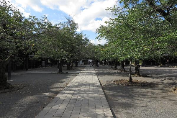 総門を抜けて神門へと歩きます。この間、神馬舎、腰掛石、宝物館、芸能殿、神鹿園などがあります。