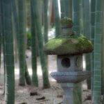 第10番 報国寺(聖観音)