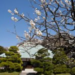 第9番 浄妙寺(聖観音)