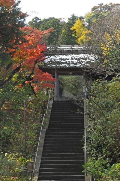 平成28年(2016年)11月25日、東慶寺の紅葉。