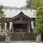 天津神明宮の御正殿。左右には紅山桜が植えられています。別名は大山桜、蝦夷山桜。東北や北海道に自生している桜です。まだ鎌倉のソメイヨシノは咲いていませんでしたが、もう咲いていました。