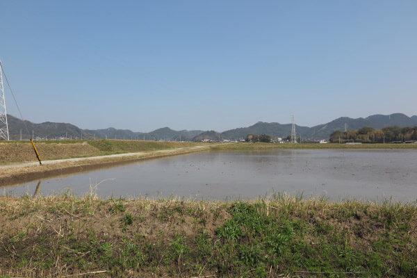 千葉、鴨川の水田と山々。長狭米の産地です。