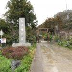 天津神明宮の参道とニノ鳥居。この鳥居と三ノ鳥居は、二十年に一度、伊勢神宮の式年遷宮にならって建て替えられます。
